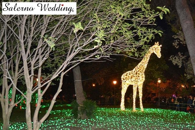 luci d'artista giraffa - Copia