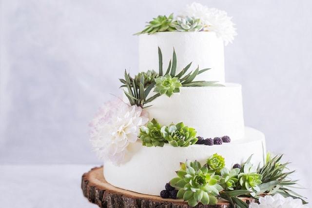 Matrimonio Tema Piante Grasse : Piante grasse e nozze